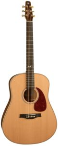 Read more about the article Seagull Artist Mosaic Acoustic Guitar Review (2021)