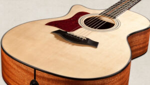 Read more about the article Taylor 314CE Review [2021 Updated]